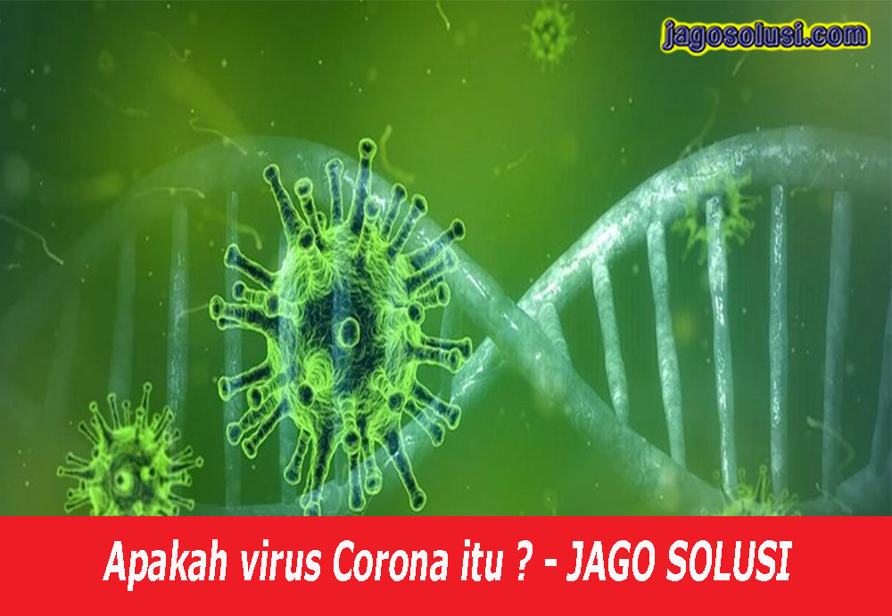 apakah viris corona itu - penularan virus corona dan bahaya virus corona, corona virus adalah, pencegahan virus corona, a coronavirus, a covid 19 response that is quick off the blocks the hindu, a covid-19 response that is quick off the blocks the hindu, a cure for corona virus, a cure for corona virus, a milano corona virus, a) when and where did the corona virus start, about corona beer, about corona news, about corona render, about corona virus in italy, about corona virus in italy, about corona virus in singapore, about corona virus in usa, about corona virus in usa, about natalie corona, adviento corona de adviento, africa covid 19, africa covid 19, air new zealand covid 19, airborne clover-19, apa itu corona virus, australia corona virus, baby baby corona, bahaya corona virus, bali corona virus, bali corona virus, bandung corona virus, barcelona corona virus, barcelona corona virus, bbc co id-19, bbc co id-19, beer corona price in india, beer corona, bentuk corona virus, berita corona virus, berita terbaru corona virus, berita terkini corona virus, berlin corona, bill gates corona virus, bill gates corona virus, blasi ilary fabrizio corona, boston co id-19, boston co id-19, by corona song, by corona virus, by corona virus, california corona virus, california corona virus, capital corona 2019, casi coronavirus italia, cdc and covid 19, cdc corona virus update, cdc covid 19 briefing, cdc covid 19 briefing, cerveza corona, chest x ray covid 19, china corona virus, china corona virus, china covid 19, china covid 19, ciri ciri corona virus, ciri2 corona virus, corona absolute 1993, corona absolute 1994, corona absolute 2000cc, corona absolute indonesia, corona absolute modif, corona absolute, corona altis, corona amerika, corona and corona familiar, corona artinya, corona bandung rshs, corona bandung, corona beer adalah, corona beer adalah, corona beer harga, corona beer harga, corona beer, corona beer, corona bekas bandung, corona bekas bandung, corona bekas, corona bekas, corona bekasi, corona bir, corona bogor, corona borealis, corona borealis, corona california, corona car, corona checker, corona china, corona cianjur, corona ciracas, corona cirebon, corona ciri ciri, corona corolla, corona corona virus update, corona corona virus video, corona corona virus, corona corona virus, corona corona, corona dentis, corona di bali, corona di bandung, corona di bekasi, corona di bogor, corona di dunia, corona di indonesia, corona di iran, corona di italia, corona di jakarta, corona di malaysia, corona effect adalah, corona effect, corona electric, corona ex saloon 86, corona ex saloon 86, corona ex saloon 91, corona ex saloon 91, corona ex saloon modifikasi, corona ex saloon, corona ex saloon, corona ex, corona extra adalah, corona extra adalah, corona extra halal, corona extra halal, corona extra harga, corona extra harga, corona extra, corona extra, corona facebook, corona fast furious, corona fc porto, corona fc, corona food, corona football player, corona footballer, corona for blender, corona full movie, corona fungisida, corona game engine, corona genosida, corona gl 84, corona gl 86, corona gl, corona gli 1997, corona google maps, corona gps, corona guilin, corona gx, corona harga, corona hari ini 19 maret 2020, corona hari ini 20 maret 2020, corona hari ini 20 maret, corona hari ini jawa timur, corona hari ini, corona hashtag, corona hopkins, corona hotel, corona huawei, corona indo, corona indobara, corona indonesia 20 maret, corona indonesia peta, corona indonesia, corona insektisida, corona iran, corona is, corona italia, corona itu apa, corona jadul dijual, corona jadul, corona jakarta go id peta, corona jakarta, corona jatengprov, corona jeruk nipis, corona jogja, corona jogjaprov, corona jsr, corona jus, corona kabupaten bandung, corona kabupaten bogor, corona kbbi, corona korea utara, corona korea, corona la galaxy, corona labs, corona lampung, corona lion star, corona listrik, corona live map, corona live, corona location, corona lottery live draw, corona lottery, corona malaysia, corona map, corona mark ii, corona meninggal, corona menurut islam, corona minuman, corona mobil, corona modifikasi, corona movie, corona mp3, corona nasional, corona now lil pump, corona ntbprov go id, corona obat padi, corona obat pertanian, corona obat, corona odp, corona offroad, corona olx jakarta, corona olx, corona on twitter, corona outbreak, corona pada trafo, corona palembang, corona panik, corona pekanbaru, corona pestisida, corona plus, corona porto, corona primer, corona primer, corona primer, corona primer, corona printing bogor, corona promo bogor, corona promo, corona q, corona queen film, corona queen, corona queens, corona quiz, corona quora, corona quotation, corona quote fast and furious, corona quote, corona radiata adalah, corona radiata kanan, corona radiata zona pelusida, corona radiata, corona rapunzel, corona renderer, corona rt100, corona rt104, corona rt132, corona rt81 1973, corona rt81, corona sedan, corona semarang, corona sembuh, corona senjata biologis, corona singapura, corona sitemap, corona solo hari ini, corona sun, corona surabaya, corona symptoms, corona tahun 85, corona tailor, corona tasikmalaya, corona terbaru, corona terkini, corona termos, corona toyota, corona toyota, corona tt, corona twincam, corona twitter, corona ub malang, corona ub, corona update 20 maret, corona update dunia, corona update jakarta, corona update, corona vaksin, corona virus corona meme, corona virus coronavirus, corona virus covid 19 global cases by johns hopkins, corona virus covid 19 global cases by johns hopkins, corona virus covid 19 global cases by johns hopkins, corona virus covid 19 global cases by johns hopkins, corona virus covid 19 global cases by johns hopkins, corona virus covid 19 global cases by johns hopkins, corona virus covid 19 global cases by, corona virus indonesia, corona virus is, corona virus nya, corona virus nya, corona virus update indonesia, corona virus update, corona virus wikipedia, corona virus wuhan, corona virus xi jinping, corona virus xp, corona wagon, corona waled, corona watch, corona whiskey, corona who, corona wikipedia, corona wine, corona wonogiri, corona wuhan, corona xiaomi, corona yajuj majuj, corona yamaguchi, corona yamaha, corona yaman, corona young living, corona youngest death, corona youthful vessel, corona youthful, corona ytb, corona zenith vessel, corona zenith, corona zombie, corona zona, corona zone map, corona zone, corona zoom 2600x, corona zoro, corona ztp80a, corona ztp80a-7, coronavirus beer meme, coronavirus canada update, coronavirus canada update, coronavirus covid 19 global cases by johns hopkins csse, coronavirus covid 19 global cases by johns hopkins csse, coronavirus covid 19 global cases by johns hopkins csse, coronavirus covid 19 global cases by johns hopkins csse, coronavirus covid 19 global cases by johns hopkins csse, coronavirus covid 19 global cases by johns hopkins csse, coronavirus covid-19 global cases by johns, coronavirus covid-19 global cases by johns, coronavirus covid-19 global cases by johns, coronavirus covid-19 global cases by johns, coronavirus covid-19 global cases by johns, coronavirus covid-19, coronavirus in zhengzhou, coronavirus kya hai in hindi, coronavirus kya hai in hindi, coronavirus map, coronavirus mort, coronavirus nhs, coronavirus numbers, coronavirus ontario, coronavirus ontario, coronavirus stats, coronavirus symptoms, coronavirus symptoms, coronavirus symptoms, coronavirus symptoms, coronavirus symptoms, coronavirus symptoms, coronavirus yle, coronavirus, cortana windows 10, covid 19 adalah, covid 19 airborne who, covid 19 al quran, covid 19 artikel, covid 19 coronavirus disease, covid 19 coronavirus disease, covid 19 coronavirus outbreak, covid 19 coronavirus outbreak, covid 19 coronavirus outbreak, covid 19 death toll, covid 19 diagnostics, covid 19 diagnostics, covid 19 e coronavirus, covid 19 effects, covid 19 events, covid 19 flight cancellation, covid 19 formula 1, covid 19 global map, covid 19 global, covid 19 harus panik atau hadapi, covid 19 hk gov, covid 19 jakarta, covid 19 jawa timur, covid 19 journal pdf, covid 19 jumlah, covid 19 live world map, covid 19 magelang, covid 19 malaysia latest news, covid 19 map jakarta, covid 19 map jawa barat, covid 19 map, covid 19 mati pada suhu, covid 19 menurut islam, covid 19 menurut pandangan islam, covid 19 menurut para ahli, covid 19 merupakan, covid 19 ou corona virus, covid 19 recovered patient, covid 19 singapore airlines, covid 19 statistics, covid 19 sukoharjo, covid 19 taipei, covid 19 tangerang selatan, covid 19 tangerang, covid 19 test kit, covid 19 tulungagung, covid 19 us map, covid 19 us news, covid 19 vs coronavirus, covid 19 vs coronavirus, covid 19 whatsapp, covid 19 who adalah, covid 19 who map, covid 19 who, covid 19 world data, covid 19 world news, covid-19 and real estate, covid-19 another patient with indonesian travel history tests positive in malaysia, covid-19 aviation, covid-19 beyond containment but singapore's efforts will slow the spread harvard don, covid-19 cases indonesia, covid-19 component, covid-19 declaration, covid-19 europe, covid-19 family, covid-19 impact on chinese economy, covid-19 impact, covid-19 in daegu south korea, covid-19 in putrajaya, covid-19 is traveling along the new silk road, covid-19 jakarta post, covid-19 jira ticket, covid-19 kidney failure, covid-19 news today, covid-19 rank, covid-19 result, covid-19 rshs, covid-19 singapore news, covid-19 test how, covid-19 tracker ios, covid-19 uda holding, covid-19 warren buffett, covid-19 who china, covis 19 virus symptomen, cura corona virus, cure for corona virus, cure for corona virus, cure for covid 19, cure for covid 19, d?ch covid 19 1 3, d?ch covid 19 1 3, dallas corona virus, dampak corona virus, dashboard covid 19 john hopkins, dashboard covid 19 john hopkins, dbs covid 19 insurance, dbs covid 19 insurance, de corona espinas, de la corona de adviento, de reina corona, deaths from corona virus in us, decreto covid 19, decreto covid 19, definition of corona, del mar corona, del sol corona, details about corona virus, deutschland corona virus, did the corona virus start, did the corona virus start, direct corona, discharge corona, does the corona virus kill you, e coronado pes 2020, efek corona virus, effect of corona virus, effect of corona, effects of corona virus, effects of corona virus, el corona virus que es, el corona virus que es, el cura para el corona virus, en brasil corona virus, en chile corona virus, en chile corona virus, en corona queens, en corona virus, en corona virus, en italien corona, en peru corona virus, epidemic corona virus, euro a corona checa, extra corona, fabrizio corona ilary blasi, fabrizio corona, fakta corona virus, familiar corona, felcra covid 19, felcra covid 19, ferrea corona, festival corona, first case cover-19, first case cover-19, flu vs corona virus, flu vs corona virus, flushing meadows corona park, for corona virus, for corona virus, francia corona virus, francis pope corona virus, francis pope corona virus, from where corona virus spread, from where did corona virus start, from where did corona virus start, gambar corona virus, gas corona, gejala kena corona virus, gejala terjangkit corona virus, georgia corona virus, germania covid 19, germania covid 19, germany corona virus, germany corona virus, gi corona virus, gif corona virus, gif corona virus, giorgio corona, glen ivy corona, global case covid 19, global case covid 19, global corona virus cases, global corona virus, gloucestershire corona virus, grand hotel corona sol, grande fratello corona, grande fratello vip fabrizio corona, great clips corona, guadalajara corona capital 2020, guardian co id-19, guardian co id-19, guideline copd-19, guideline copd-19, h1n1 and coronavirus, how iran corona virus, how is corona virus in california, how is corona virus in california, how is corona virus in italy, how is corona virus in the philippines, how is corona virus, how is corona virus, how much corona virus in australia, how much corona virus in australia, how much corona virus in germany, how much corona virus in uk, how much corona virus in uk, how much corona virus in usa, how much corona virus in usa, how much is corona beer, how much is corona familiar, how to cure corona virus, how to cure corona virus, i sintomi corona virus, i sintomi corona virus, indonesia corona virus, indonesiancupid 19 cases, indonesiancupid 19 cases, interim list of household products and active ingredients for disinfection of covid-19 virus, interim list of household products and active ingredients for disinfection of covid-19 virus, interim list of household products and active ingredients for disinfection of covid-19 virus, interim list of household products and active ingredients for disinfection of covid-19 virus, interim list of household products and active ingredients for disinfection of covid-19 virus, interim list of household products and active ingredients for disinfection of covid-19 virus, is corona a beer, is corona extra, is corona virus covid 19, is corona virus cure, is corona virus cure, is corona virus in australia, is corona virus in singapore, is corona virus in the uk, is corona virus in the uk, is corona virus in usa, is corona virus in usa, is corona virus update, is corona virus updates, is corona virus, is corona virus, is covid 19 corona virus, is covid 19 corona virus, is covid 19 in france, is covid 19 in france, is covid-19 the virus or the disease, is the corona virus in california, is toyota corona, italia covid 19, italia covid 19, j corona pes 2020, j corona pesdb, j corona porto, j corona, jakarta corona virus, jakarta corona virus, jambi corona virus, japan movie-19, japan movie-19, japan movie-19, japan movie-19, japan movie-19, japan movie-19, japon corona virus, jenis corona virus, jepang corona virus, jesus corona, jesus manuel corona, jocelyn corona, joe corona, johns hopkins coronavirus covid-19 global cases, johns hopkins coronavirus covid-19 global cases, johns hopkins covid-19 global cases, johns hopkins covid-19 global cases, jordan corona virus, jose de jesus corona, jumlah corona virus, jumlah korban corona virus terbaru, jumlah korban corona virus, jumlah meninggal corona virus, k corona, kabar corona virus, kasus corona virus di indonesia, kaufbeuren corona, kbank ?????? covid 19, kbank ?????? covid 19, kbank covid 19, kbank covid 19, kenya corona virus, kenya corona virus, kerala coronavirus, khazanah covid 19, khazanah covid 19, kingdom of corona lucky emblems, kingdom of corona, kino corona, kinoplex corona kaufbeuren, kinoplex corona, koblenz corona virus, konspirasi corona virus, konspirasi teori corona virus, korban corona virus terkini, korban corona virus, korban meninggal corona virus, korea covid-19, korea covid-19, korea news co id-19, korea news co id-19, korea news co id-19, korea news co id-19, korean air co id-19, korona adalah, korona gigi, korona kbbi, korona kelistrikan, korona kenari, korona kielce vs lechia, korona kielce, la california corona virus, la cerveza corona, la corona beer, la corona california, la corona capital, la corona en italien, la corona news, la corona radiata, la corona virus in italia, la corona virus outbreak, la corona virus status, la corona virus update, la corona virus update, la cura corona virus, la familiar corona, la france covid 19, la france covid 19, latest covid 19 malaysia, latest covid 19 malaysia, latest covid 19 news malaysia, latest covid 19 news malaysia, lauro corona, life span of covid 19 virus, lisboa covid 19, lisboa covid 19, live corona virus, live ticker corona virus, lombardia corona virus, los angeles coronavirus, m coronavirus, madonna della corona santuario, madonna della corona, magazine corona, malaysia corona virus, malaysia corona virus, malaysia covid 19 case, malaysia covid 19 case, malaysia cupid 19 cases, malaysia cupid 19 cases, malaysia cupid 19 cases, malaysia cupid 19 cases, malaysia cupid 19 news, malaysia cupid 19 news, man made corona virus, man made corona virus, map coronavirus covid 19, map coronavirus covid 19, map of corona virus in us, marca corona, maroc covid 19, maroc covid 19, mauro corona, meaning of corona, medicine for corona virus, medicine for corona virus, mexico covid 19, mexico covid 19, milano corona virus, milano corona virus, mumbai coronavirus, münchen corona virus, napoli corona virus, napoli corona virus, natalie corona officer, natalie corona, nc coronavirus, nederland covid 19, nederland covid 19, netherlands corona virus, netherlands corona virus, new name of corona virus, new york corona virus, new york corona virus, news covid 19 south korea, news covid 19 south korea, news on corona virus china, news on corona virus china, news virus covid 19, nigeria corona virus, norco corona school district, novel coronavirus (ncov-19), novel coronavirus (ncov-19), nz corona virus, nz corona virus, o que e corona virus, o que e corona virus, of corona virus cases in us, of corona virus cases in us, of corona virus, of corona virus, officer natalie corona, oise covid 19, oise covid 19, oman corona virus, oman covid 19, oman covid 19, on corona discharge, online corona virus map, online corona virus, origine corona virus, origine corona virus, osorno corona, outbreak corona virus, outbreak corona virus, owns corona, pagar tarjeta corona, paris corona virus, paris corona virus, patient with corona virus, pdf covid 19, pdf covid 19, pencegahan corona virus, pengertian corona virus, penularan corona virus, penyebab corona virus, penyebaran corona virus, peru corona virus, peru corona virus, philippines corona virus, philippines corona virus, piemonte corona virus, piemonte corona virus, pizza corona, planta corona de cristo, price of corona beer in india, price of corona, quanti anni ha fabrizio corona, quarantine corona virus, que e o corona virus, que e o corona virus, qué es corona virus, que es el virus del cobat 19, que es el virus del cobat 19, que es una corona circular, que es una corona de adviento, que es una corona dental, qué significa la corona de adviento, que vela se prende primero en la corona de adviento, queen of corona, queens corona, queensland coronavirus, questionnaire covid 19, questionnaire covid 19, quotes about corona virus, quotes about corona, quran corona virus, r naught of covid 19, r naught of covid 19, radar corona virus, radiata corona, rancho corona, real time co id-19, real time co id-19, real time corona virus map, realtime covid 19, realtime covid 19, recovery from corona virus, recovery from corona virus, reddit corona virus, reddit corona virus, render corona, report on corona virus, report on corona virus, requisitos tarjeta corona, research on corona virus, resident evil corona virus, rheinland pfalz corona virus, rhythm of the night corona, ri corona virus, riccardo fogli fabrizio corona, rna corona virus, romania corona, sacra corona unita, santuario madonna della corona, singapore and covid 19, singapore corona virus, singapore corona virus, singapore covid 19 cases, singapore covid 19 cases, sintoma corona virus, sintomas do.coronavirus, sintomas do.coronavirus, size of virus covid-19, size of virus covid-19, south korea and covid 19, south korea covid 19 cases, south korea covid 19 cases, spread of corona virus, spread of corona virus, status corona virus, status corona virus, stock corona beer, symptom of covid 19, symptom of covid 19, symtome corona virus, symtome corona virus, taiwan covid 19, taiwan covid 19, thailand covid 19, thailand covid 19, the corona capital, the corona virus australia, the corona virus australia, the corona virus how did it start, the corona virus in california, the corona virus in china, the corona virus in china, the corona virus in italy, the corona virus uk, the corona virus uk, the corona virus update, the corona virus update, the corona virus wiki, the corona virus, the corona virus, the coronavirus, the cure for corona virus, the cure for corona virus, the news about corona, the origins of coronavirus, toyota corona, uk corona virus, uk corona virus, unita sacra corona, update live corona virus, update live corona virus, update on corona virus in india, update on corona virus in india, update on corona virus in singapore, update on corona virus in singapore, update on corona virus, update on corona virus, us corona virus cases, us corona virus cases, us corona virus deaths, us corona virus map, us corona virus map, usa and covid 19, usa corona virus, usa corona virus, usa covid 19, usa covid 19, v coronaria ventriculi, vaccine cold-19 israel, vaccine cold-19 israel, video corona virus, vietnam corona virus, virus corona ada dalam alquran, virus corona ada dalam alquran, virus corona ada di indonesia, virus corona adalah bukti kebenaran alquran, virus corona adalah penyakit apa, virus corona adalah virus, virus corona apa itu, virus corona apa, virus corona apa, virus corona apakah sudah ada di indonesia, virus corona arab saudi, virus corona asal mula, virus corona asal usul, virus corona atau covid 19 adalah, virus corona awal mula, virus corona bali, virus corona bandung, virus corona baru, virus corona bekasi, virus corona berasal dari apa, virus corona berasal dari hewan, virus corona berasal dari, virus corona berasal dari, virus corona berasal, virus corona berita, virus corona bisa sembuh, virus corona cara mencegah, virus corona cara penularan, virus corona china wuhan, virus corona cilacap, virus corona cirebon, virus corona ciri ciri, virus corona ciri cirinya, virus corona cirinya, virus corona covid 19 dalam menjaga keutuhan integrasi nasional, virus corona dalam alquran, virus corona dalam pandangan islam, virus corona di bali, virus corona di bali, virus corona di bandung, virus corona di bandung, virus corona di cirebon, virus corona di dunia, virus corona di hp xiaomi, virus corona di indonesia, virus corona di indonesia, virus corona di italia, virus corona di jakarta, virus corona di malaysia, virus corona di malaysia, virus corona di semarang, virus corona di singapura, virus corona di wuhan, virus corona di wuhan, virus corona disebabkan oleh, virus corona edinburgh, virus corona embung fatimah, virus corona en wiki, virus corona epidemic, virus corona fatwa kehidupan, virus corona gejala dan penyebab, virus corona gejala, virus corona gejalanya, virus corona golongan darah, virus corona hari ini, virus corona hasan sadikin, virus corona hongkong, virus corona hp xiaomi, virus corona human, virus corona indonesia 18 maret 2020, virus corona indonesia 19 maret, virus corona indonesia berita, virus corona indonesia update, virus corona indonesia, virus corona influenza, virus corona italia, virus corona itu apa sih, virus corona itu apa, virus corona itu penyakit apa, virus corona jakarta, virus corona jambi, virus corona jepang, virus corona jika di zoom, virus corona jogja, virus corona jumlah, virus corona karena apa, virus corona kaskus, virus corona ke indonesia, virus corona kelelawar, virus corona ketika di zoom, virus corona korban berjatuhan, virus corona korban, virus corona kota wuhan, virus corona lab, virus corona lewat hp xiaomi, virus corona lockdown, virus corona malaysia, virus corona masuk indonesia, virus corona meninggal, virus corona menular lewat apa, virus corona menular lewat apa, virus corona menular melalui, virus corona menular melalui, virus corona menurut al quran, virus corona menurut al quran, virus corona menurut alkitab, virus corona menurut islam, virus corona menurut islam, virus corona menurut pandangan islam, virus corona menyebabkan penyakit, virus corona menyebabkan, virus corona menyebar melalui hp xiaomi, virus corona menyebar melalui, virus corona menyebar melalui, virus corona menyebar, virus corona menyerang apa, virus corona obat, virus corona obatnya, virus corona odp, virus corona okezone, virus corona on twitter, virus corona pada kucing, virus corona pada kucing, virus corona pada kurma, virus corona pada kurma, virus corona pdf, virus corona pdf, virus corona pencegahan, virus corona pencegahan, virus corona penyakit apa, virus corona penyebab, virus corona penyebab, virus corona penyebabnya, virus corona penyebaran, virus corona pertama kali, virus corona pontianak, virus corona quipper, virus corona radar cirebon, virus corona rs hasan sadikin, virus corona rs waled cirebon, virus corona rs waled, virus corona rshs, virus corona rsud waled cirebon, virus corona rsud waled, virus corona saat ini, virus corona sembuh, virus corona senjata biologi china, virus corona senjata biologis, virus corona seperti apa, virus corona seperti zombie, virus corona setelah di zoom, virus corona singapura, virus corona sudah ada obatnya, virus corona sudah masuk bandung, virus corona sudah masuk indonesia, virus corona sudah menyebar di indonesia, virus corona sudah sampai bandung, virus corona sudah sampai bandung, virus corona sudah sampai indonesia, virus corona sudah sampai mana, virus corona sudah sampai mana, virus corona surabaya, virus corona taiwan, virus corona tanda tanda, virus corona tasikmalaya, virus corona terbaru, virus corona terjadi karena, virus corona terkini, virus corona tersebar di negara mana, virus corona tertulis di alquran, virus corona thailand, virus corona tidak bisa masuk indonesia, virus corona ular, virus corona update, virus corona vaksin, virus corona vice, virus corona viral, virus corona virus 2020, virus corona virus apa itu, virus corona virus brasil, virus corona virus cura, virus corona virus en chile, virus corona virus en colombia, virus corona virus sintomi, virus corona virus zombie, virus corona waled, virus corona who, virus corona wiki, virus corona wikipedia indonesia, virus corona wikipedia, virus corona wuhan adalah, virus corona wuhan china, virus corona wuhan, virus corona xiamen, virus corona xiaomi, virus corona youtube, virus corona zombi, virus corona zoom, virus coronavirus adalah, virus coronavirus dari, virus coronavirus seperti apa, virus covid 19 corona adalah, virus covid 19 corona, virus covid 19 coronavirus, virus covid 19 pdf, virus covid 19 wiki, virus covid 19 wiki, virus covid 19 wikipedia, virus covid 19 wikipedia, virus el corona virus, virus korona adalah penyebab, virus korona adalah virus zombie, virus korona adalah, virus korona adalah, virus korona kebocoran laboratorium, virus korona korea, virus size covid-19, virus size covid-19, what are the symptom of covid 19, what is corona beer, what is corona virus australia, what is corona virus china, what is corona virus china, what is corona virus covid 19, what is corona virus, what is corona virus, what is the corona virus covid 19, what is the cure for corona virus, what is the first symptoms of coronavirus, where is covid 19 in france, where is covid 19 in france, where is the corona virus in california, where is the corona virus in italy, where is the corona virus in the uk, where is the corona virus in the uk, who corona virus update, who corona virus update, who covid 19 malaysia, who covid 19 malaysia, who is fabrizio corona, who south korea covid 19, who south korea covid 19, wiki corona virus, www.corona capital 2019, www.penyebab virus corona, www.sintomi corona virus, www.sintomi corona virus, x corona virus, x ray corona, x ray covid 19, x ray covid 19, xbox 360 corona rgh, xbox 360 corona, xe corona, xét nghi?m corona chi phí, xét nghi?m corona virus ? dâu, xét nghi?m corona virus, xi jinping corona virus, xi jinping corona virus, xian coronavirus, xian coronavirus, xian coronavirus, xiaomi corona virus, xiaomi corona virus, xtreme fitness corona, xv años de corona, yahoo news corona virus, yasser corona lesion, yelp corona ca, ymca corona, yoga den corona, yogyakarta corona virus, york region covid 19, york region covid 19, you can have any beer you want as long as it's a corona, youtube china corona virus, youtube corona virus beer, youtube corona virus update, youtube corona virus, youtube corona virus, youtube crozza corona, youtube pizza corona, youtube video pizza corona, ysa corona virus, yt corona virus, yuma corona optique, zapatillas corona, zapatos corona, ziekte covis 19, ziekte covis 19, ziektebeeld covis 19, ziektebeeld covis 19, zillow corona ca, zip code corona ca, zip code corona, zirconio corona, zoe cristofoli fabrizio corona, zones covid 19, zones covid 19, zürich corona virus, zürich corona virus