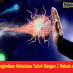Meningkatkan Kekebalan Tubuh Dengan 2 Metode Alami