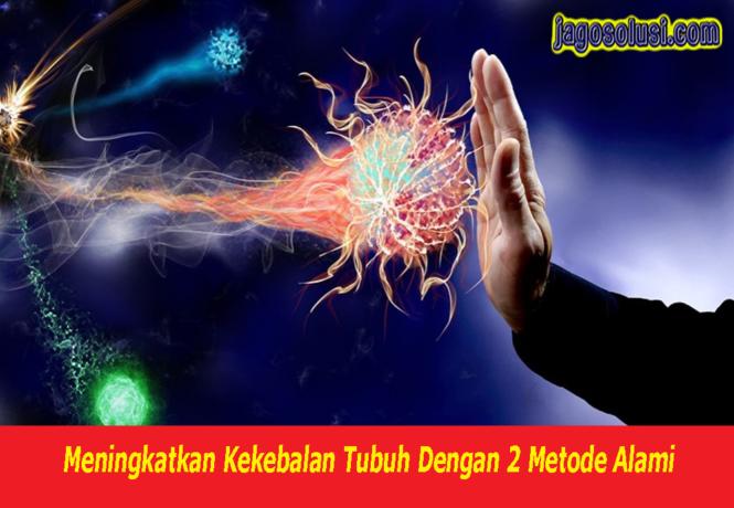 Meningkatkan Kekebalan Tubuh Dengan 2 Metode Alami, memperkuat sistem imun, jus untuk memperkuat imun tubuh, suplemen untuk memperkuat imun, tips memperkuat imun tubuh, jus untuk memperkuat imun tubuh, cara memperkuat imun tubuh kita, suplemen untuk memperkuat imun, cara memperkuat sel imun, puasa memperkuat imun, cara memperkuat imun tubuh kita, jus untuk memperkuat imun tubuh, cara memperkuat imun bayi, cara memperkuat sel imun, cara memperkuat imun tubuh kita, cara memperkuat imun bayi, memperkuat imun bayi, memperkuat imun anak, cara memperkuat imunitas tubuh wikihow, cara memperkuat sel imun, puasa memperkuat imun, cara memperkuat imun tubuh kita, cara memperkuat imun bayi, cara memperkuat imun tubuh kita, memperkuat imun bayi, cara memperkuat imun bayi, memperkuat imun anak, sistem imun zenius, hubungan sistem imun dengan zat gizi, immunsystem znacenje, sistem imun yang diserang hiv, sistem imun yang melemah dapat menyebabkan, sistem imun yang menyerang tubuh sendiri, sistem imun youtube, sistem imun yang lemah, sistem imun yang berlebihan, kesan sistem imun yang lemah, komponen sistem imun yang diserang hiv, jenis sistem imun yaitu, penyakit sistem imun yang menular, sistem imun kelas xi, sistem imun materi kelas xi, sistem imun sma kelas xi ppt, ppt sistem imun kelas xi, soal sistem imun kelas xi, rpp sistem imun kelas xi, sistem imun sma xi, materi sistem imun kelas xi pdf, sistem imun wikipedia, sistem imun warga emas, sistem imun wanita, sistem imun pada wanita, pengertian sistem imun menurut who, sistem imun vertebrata, sistem imun pada hewan vertebrata, sistem imun tubuh terhadap virus, vitamin sistem imun untuk anak, mekanisme sistem imun terhadap virus, video sistem imun, vitamin sistem imun anak, vaksin sistem imun, sistem imun terdiri dari, sistem imun tubuh pdf, sistem imun tubuh terhadap virus, sistem imun tubuh manusia pdf, sistem imun terbagi 2, sistem imun tubuh spesifik, sistem imun spesifik, sistem imun seluler, sistem imun spesifik pdf, sist